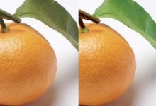 – Adobe Photoshop –  レイヤーマスクを活用した  部分的な色調補正の方法